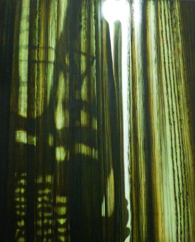 Vol gordijn, Acryl op linnen. 114 x 95cm 2012